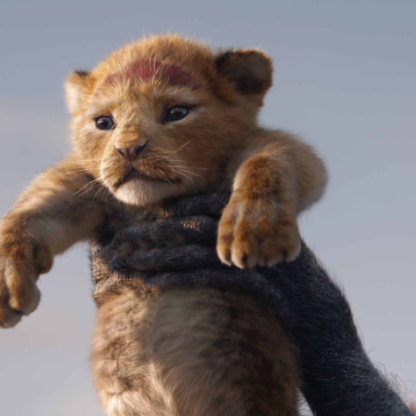 Simba in the Lion King Disney movie.