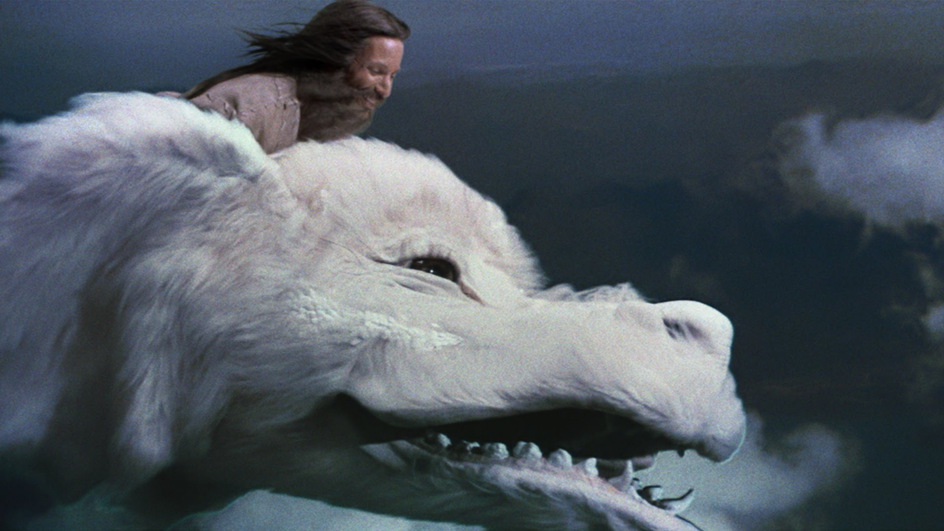 Animal Companion Falkor from The Never Ending Story.