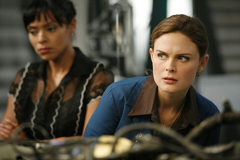 Temperance Brennan, TV series Bones
