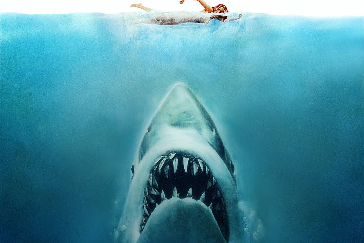Shark swimming up to unsuspecting woman, killing any romantic notions of skinny dipping.