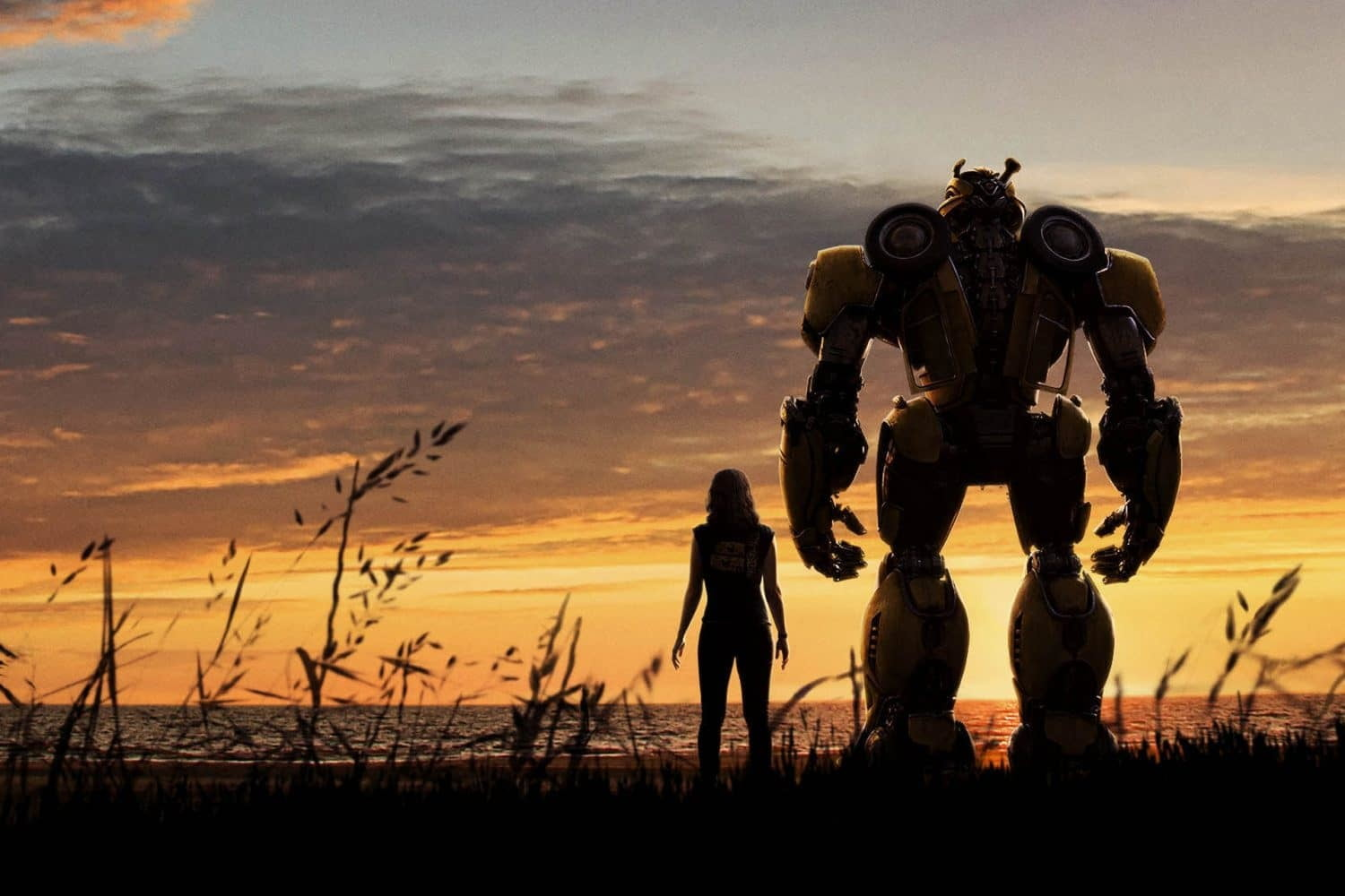 From Bumblebee (2018).  Charlie and Bumblebee stand side by side facing the ocean during the sunset.