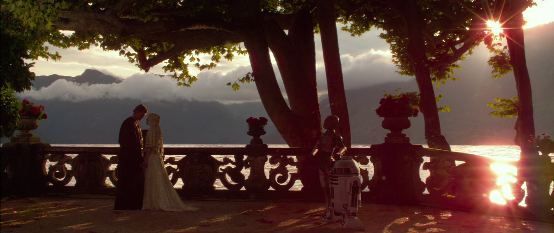 Anidala wedding; Anakin and Padme get married by the lake on Naboo