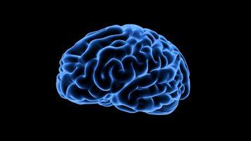 Neuroscience helps Coronavirus