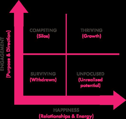 Cultural assessment 4 box model
