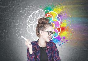 Neuroscience brain types