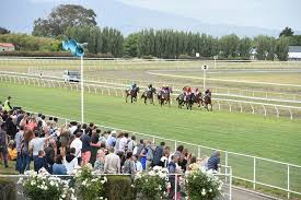 <i class='fa fa-info-circle red' aria-hidden='true'></i> Awapuni Saturday Race Meeting Analysis And Best Bets