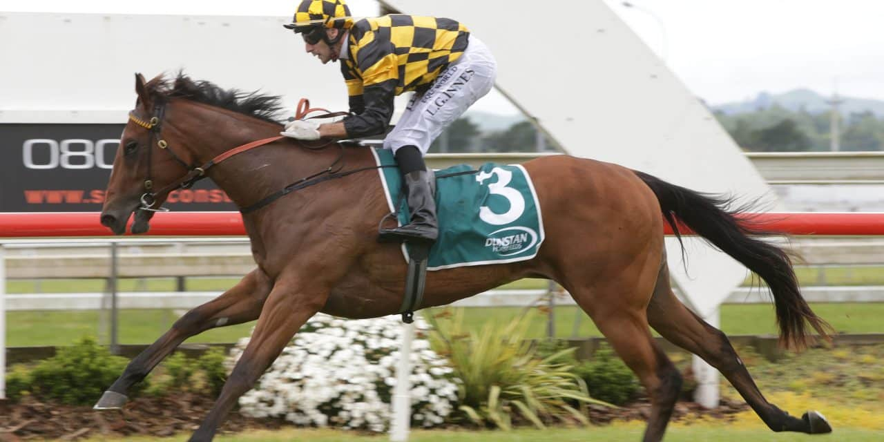 Noble pair set for Matamata features