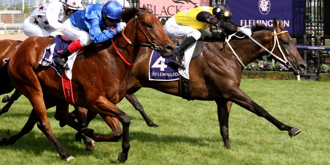 Handicapper to decide Newmarket start for In Her Time