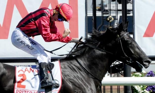 Prized Icon to stand at Kooringal Stud