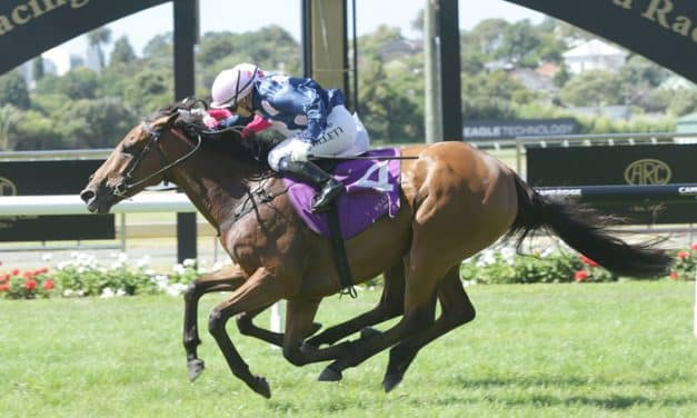 Glory Days supreme in Avondale Cup victory