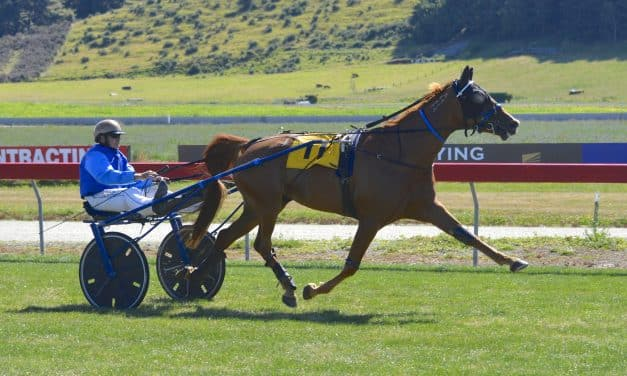 Headache mare plays it cool at Oamaru
