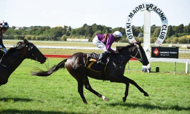 Platinum Invador presses on to Australian Derby