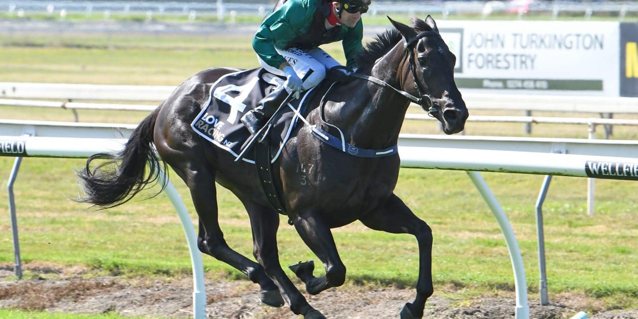 <i class='fa fa-info-circle red' aria-hidden='true'></i> Awapuni upgraded after course specialist wins opener
