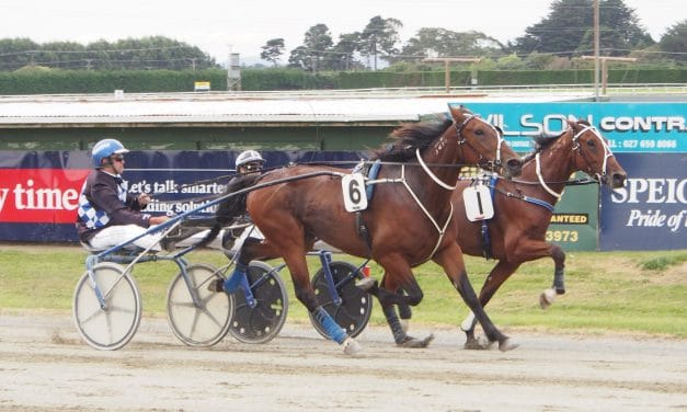 <i class='fa fa-info-circle red' aria-hidden='true'></i> Majestic Man out to emulate third dam Gee du Jour in Rowe Cup