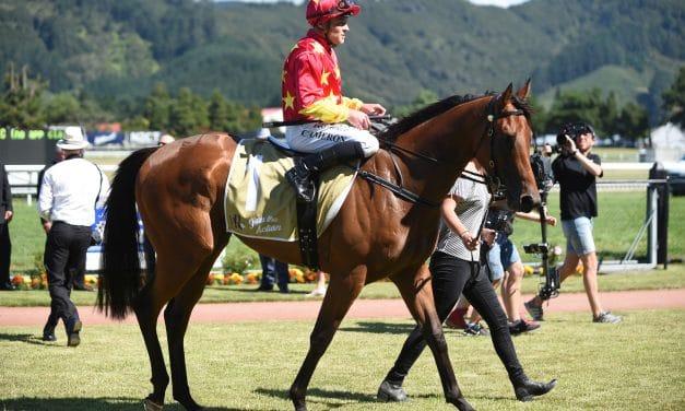 <i class='fa fa-info-circle red' aria-hidden='true'></i> Three-pronged New Zealand attack on Tulloch Stakes