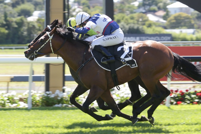 <i class='fa fa-info-circle red' aria-hidden='true'></i> Maktoum delivers Derby day victory for sponsors