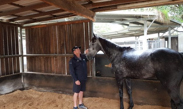 Randwick-based Kiwi contingent ready for the big day