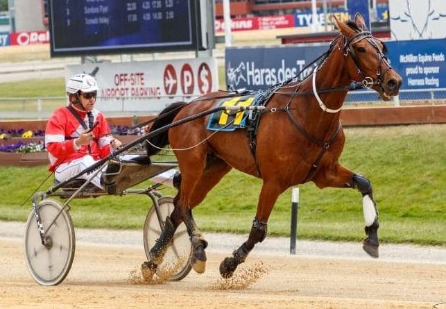<i class='fa fa-info-circle red' aria-hidden='true'></i> Gray to step out talented three-year-olds at Winton
