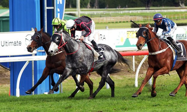 VALANTE DEFIES HIS PURSUERS IN KIWIFRUIT CUP