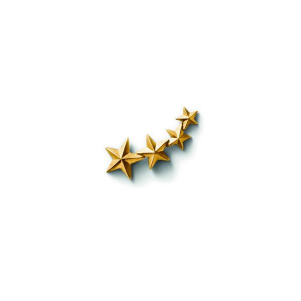 Line&Jo Earrings  STARMISS EWELL NEW gold