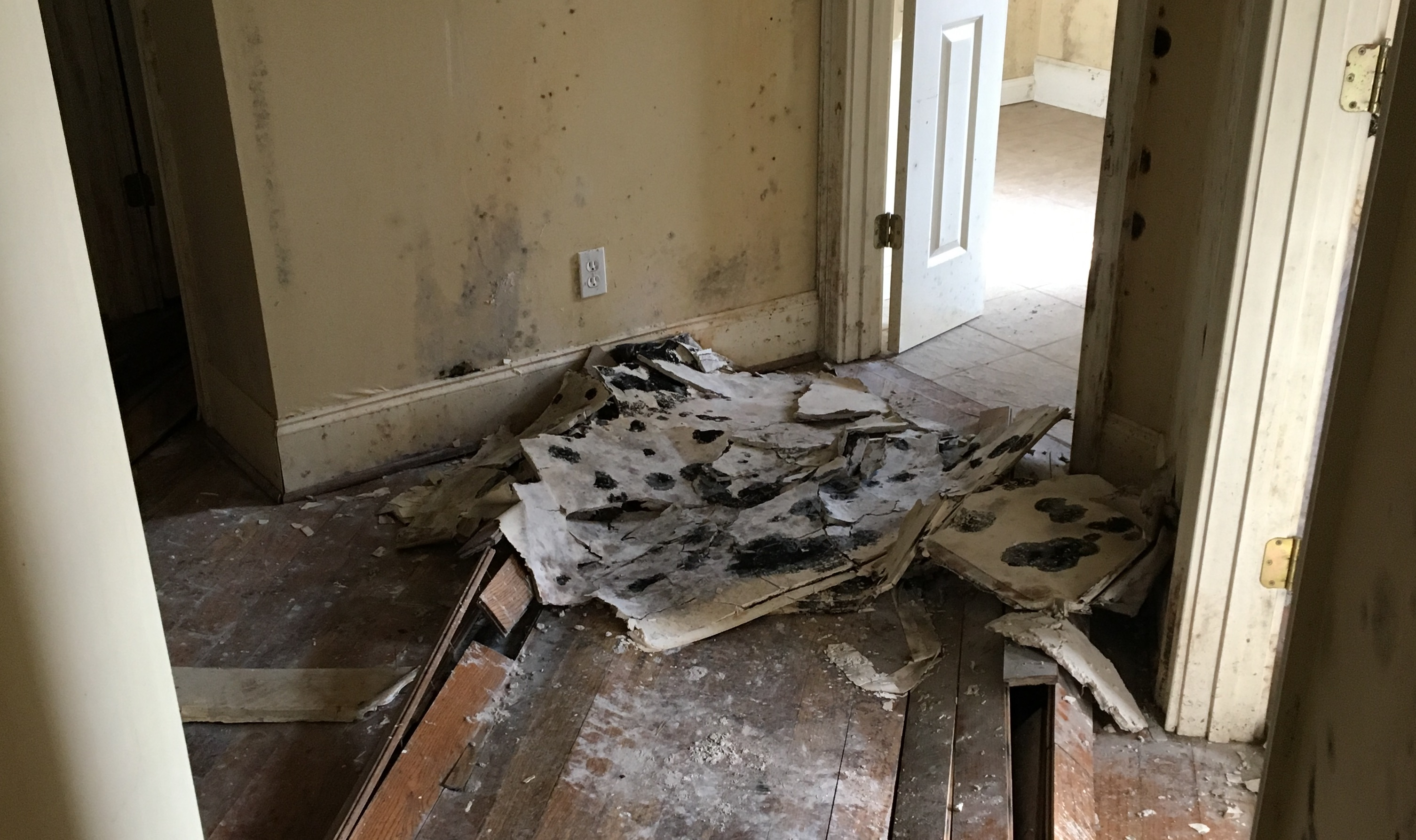 water damage west columbia