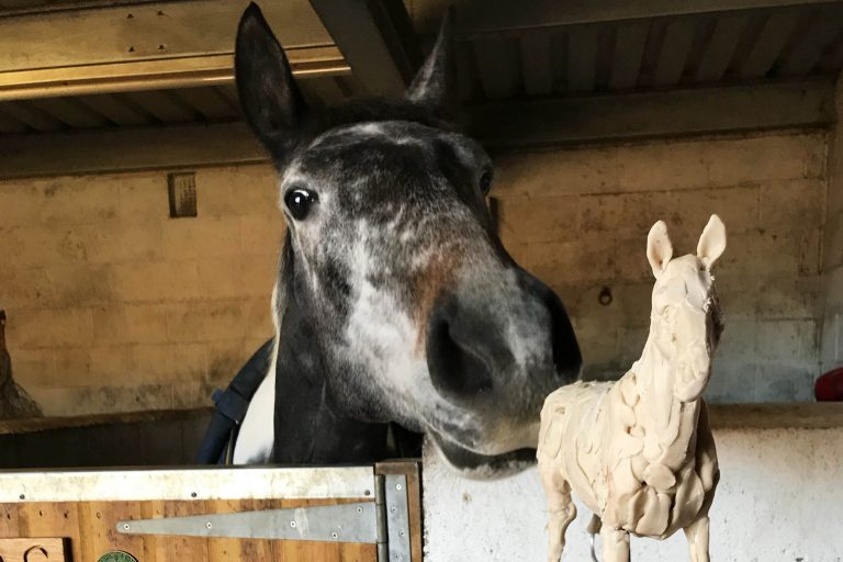 Foal found in freezing winter set to be star of the show for sculpture trails