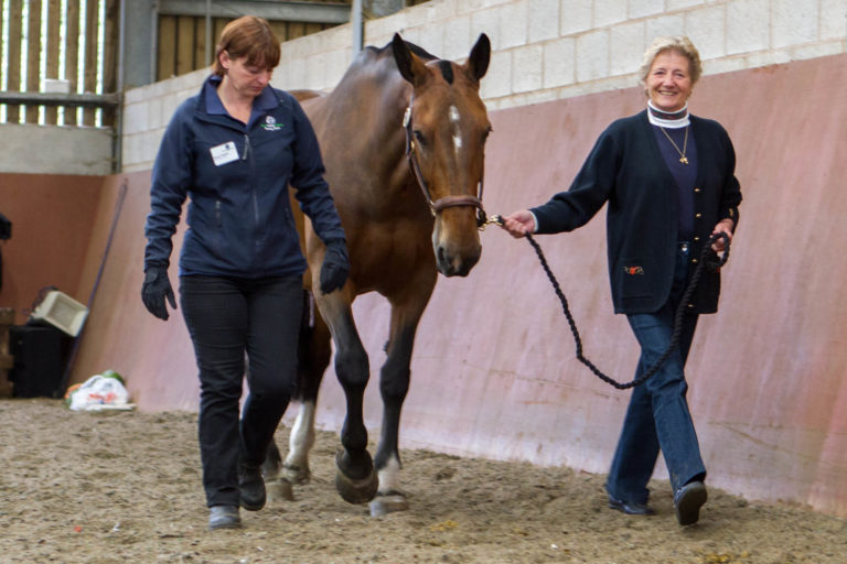 From welfare case to war horse, Penny retires from The King's Troop