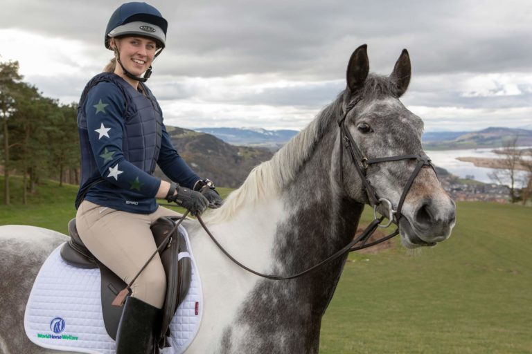 Artist turns hand to help horses in sculpture trail