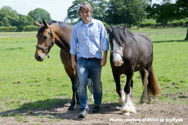 Four deserving horses find happiness with Melanie and John Bishop