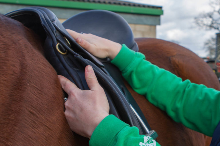 Fitting, using and maintaining a saddle