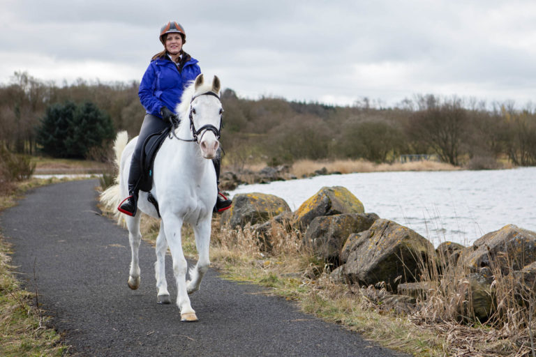 Rehomed Horse of the Year 2019 competition