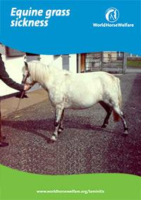 Equine Grass Sickness PDF