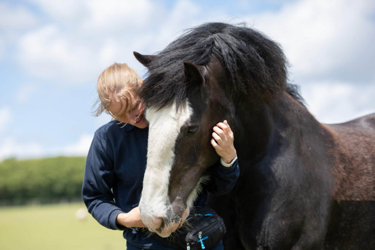 World Horse Welfare's Glenda Spooner Farm to host first official visit for people with dementia
