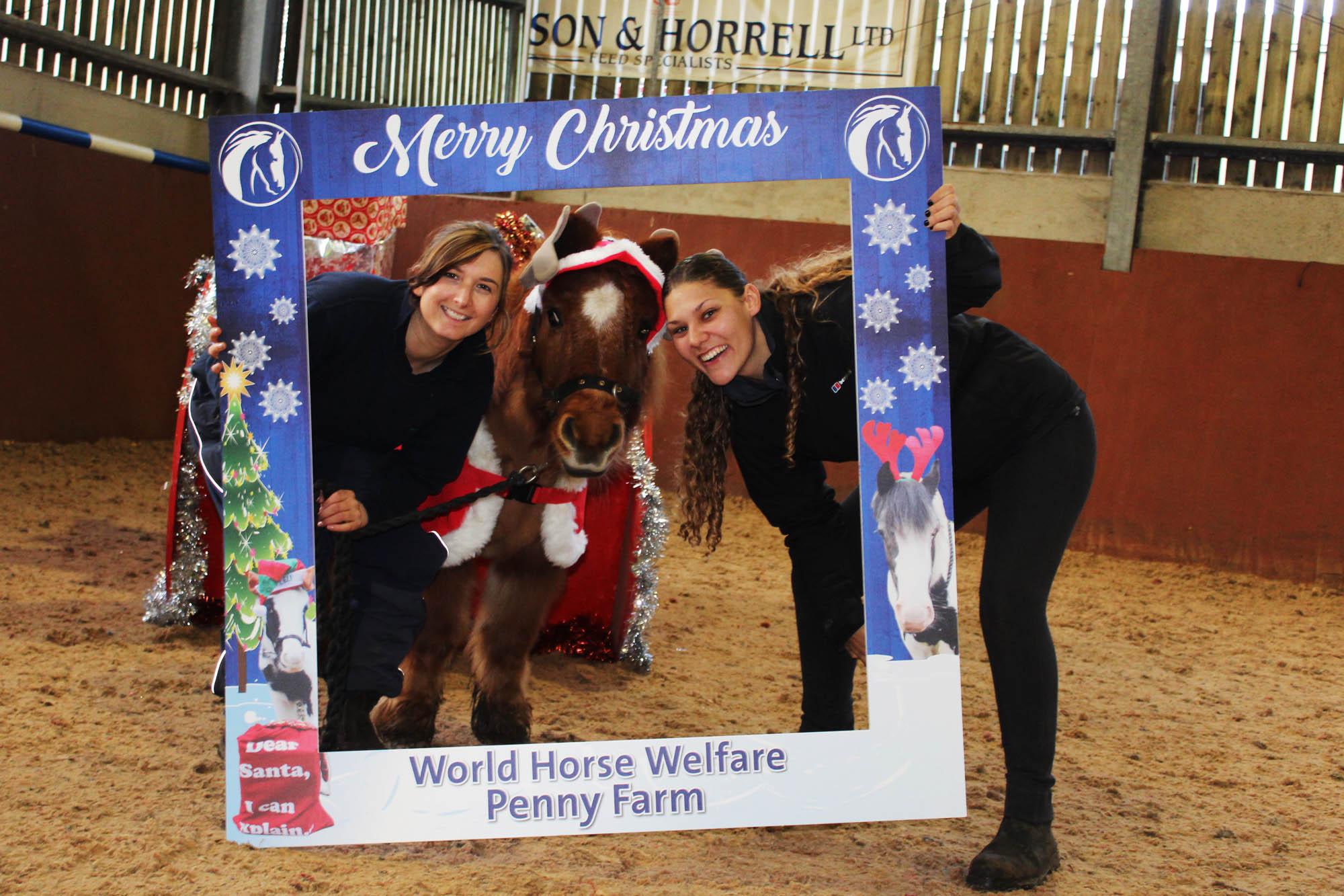 Penny Farm Christmas Fair