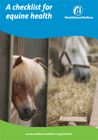 A checklist for equine health