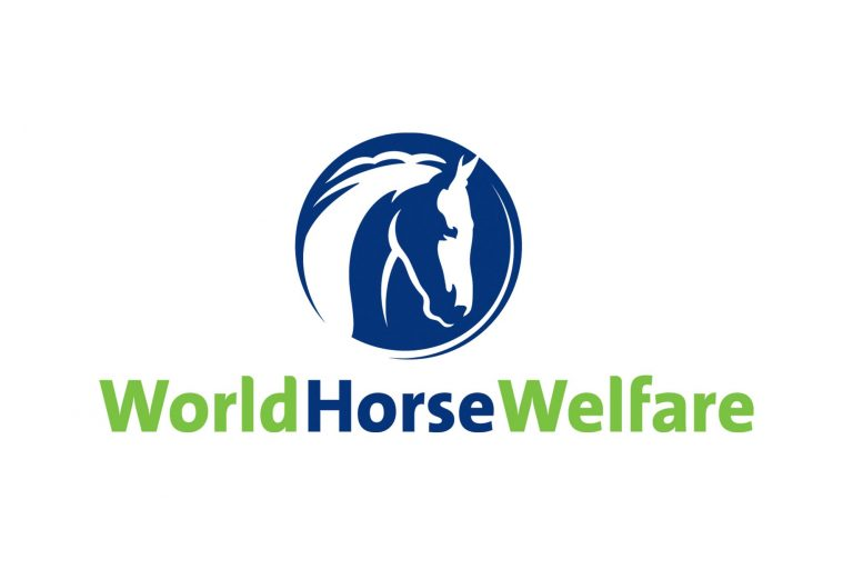 How is coronavirus impacting World Horse Welfare's work in the UK?