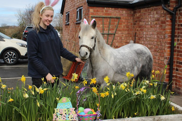 Cancelled – Easter Weekend Eggstravaganza 10th-13th April