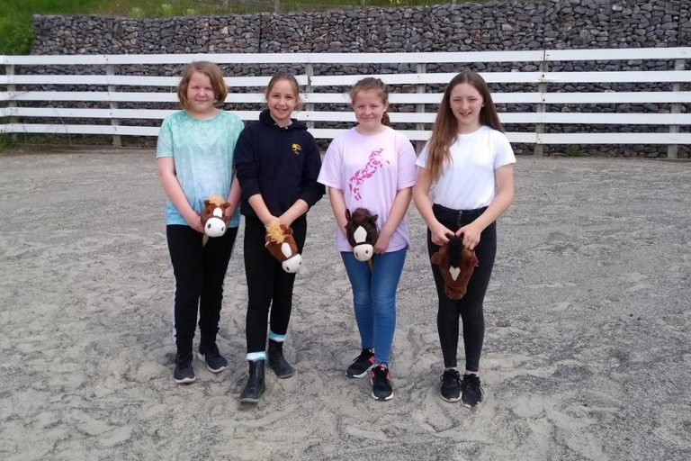 Hobby horse show jumping