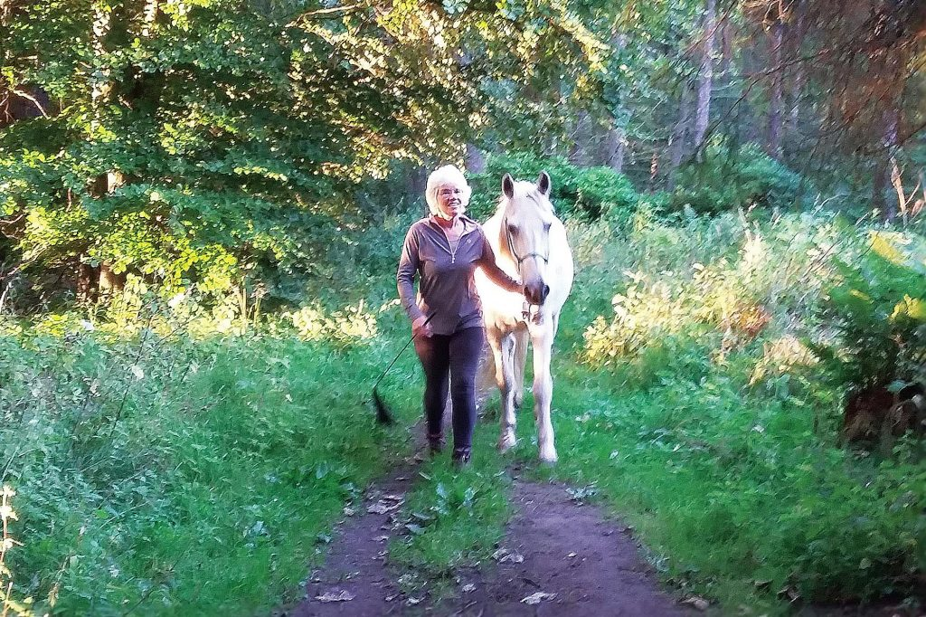 Grey pony and handler walking through wood