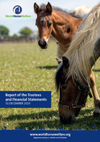 Front cover of World Horse Welfare 2020 accounts