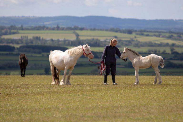 Visit Glenda Spooner Farm