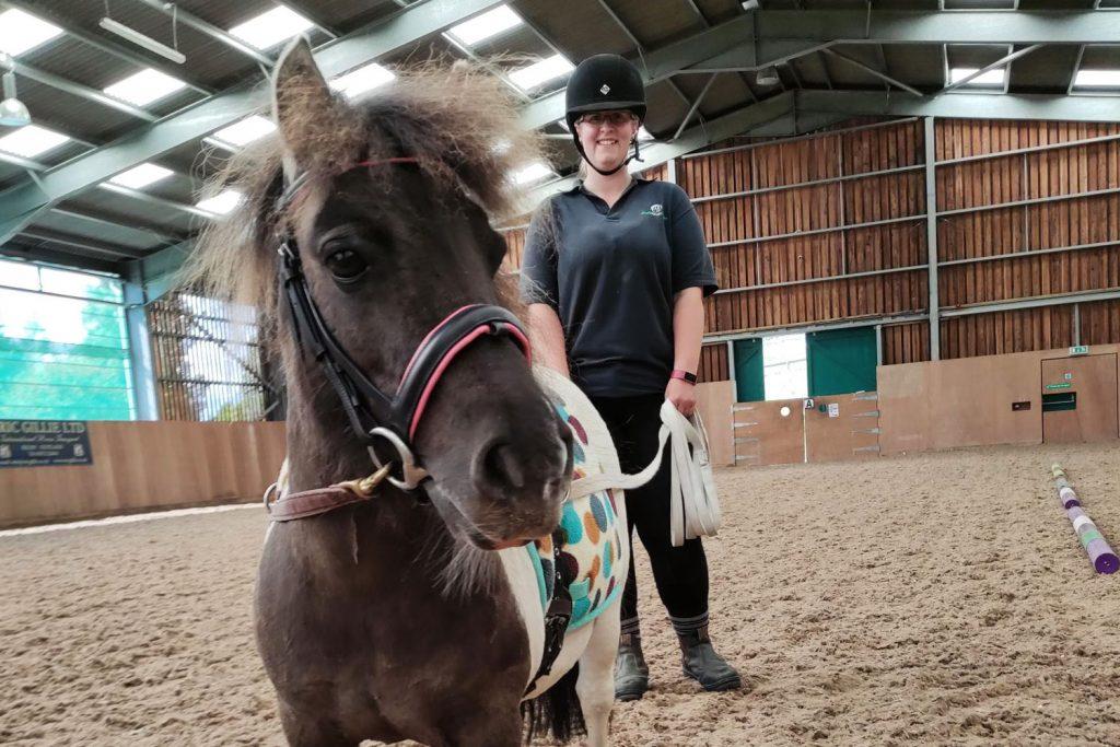 Shetland Pony being long reined by World Horse Welfare groom