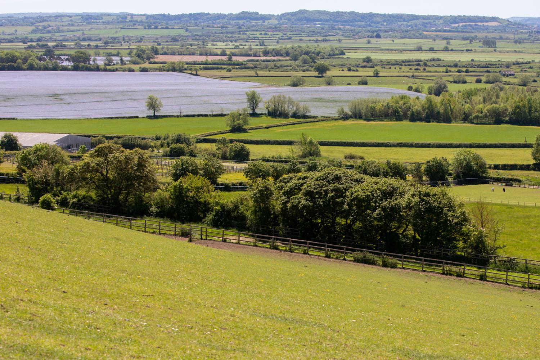 View across the fields of Glenda Spooner farm
