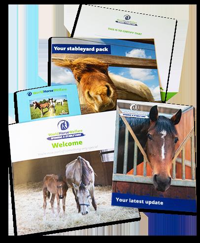Sponsor a stableyard welcome pack literature