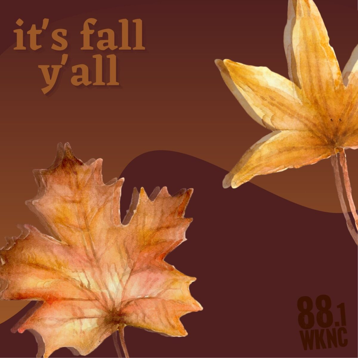 """Brown background image with red and orange leaves overlayed with text that reads """"it's fall y'all"""" in the upper elft hand corner and """"88.1 WKNC"""" in the bottom left hand corner"""
