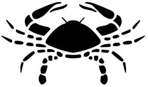 black-cancer-zodiac-signs