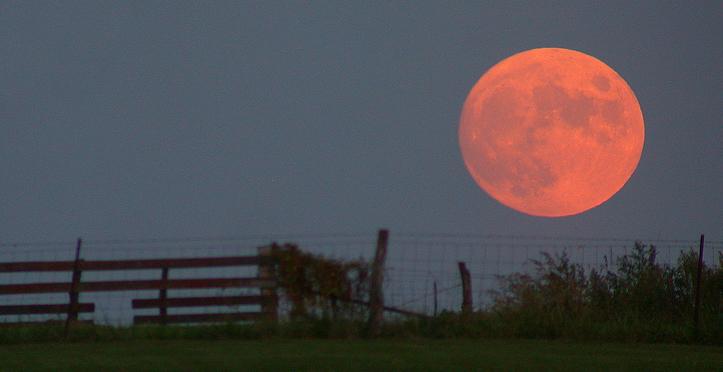 Harvest full  fall moon