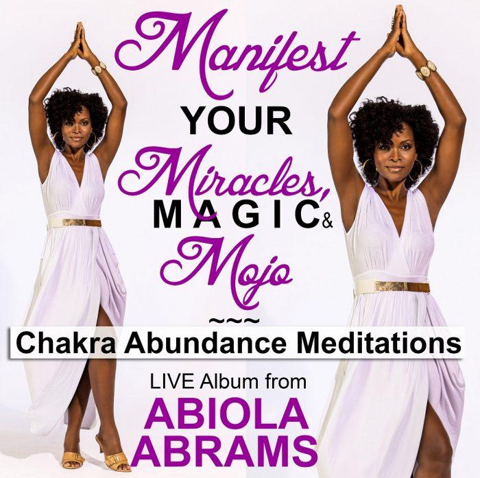 Chakra Abundance Meditations