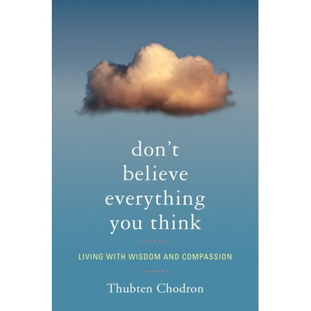 book - don't believe everything you think