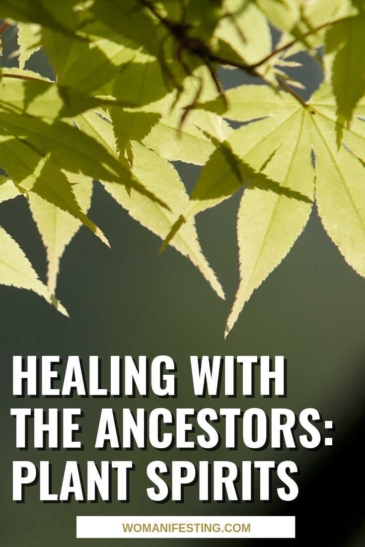 Healing With The Ancestors Plant Spirits